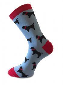 Носки эксклюзивные летние и демисезонные 34 купить в интернет-магазине Paradise-socks.ru